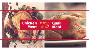 Quail Meat vs. Chicken Meat
